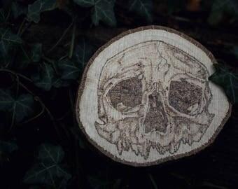 Skull Woodburning