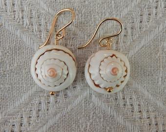 Spiral Shell Earrings, Shiva Shell Earrings, Pacific Cat's Eye Shell Earrings, Sea Shell Earrings, Summer Island Ocean Beach Jewelry