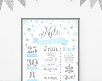 Boy First Birthday Poster Blue And Silver Baby Milestone Sign Baby Infographic Winter Birthday Party Decor Onederland DIGITAL DOWNLOAD 16x20