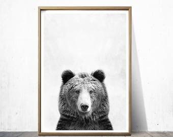 Bear Print Bear Poster Bear Art Animal Print Nature Print