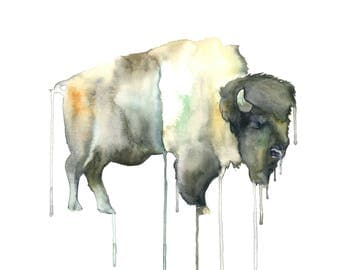 Watercolour Buffalo Print