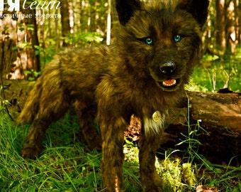 SOLD Canadian wolf Ralph - handmade stuffed realistic animal