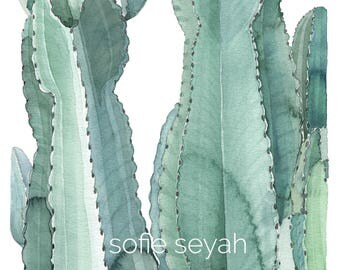 Cacti Watercolour and Ink Painting - Sofie Seyah Illustration - Botanical Art Print