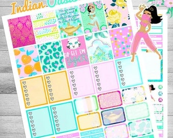 Printable Planner Stickers, Bollywood stickers, July weekly kit, Elephant stickers, for Erin Condren, Flamingo stickers, floral, glam summer