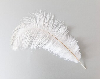 Ivory Ostrich Feathers, Large Ostrich Feathers, Bridal Trim, Craft Feathers, Ivory Feather Trim - Remnant