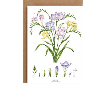 A6 Greeting Card - Freesia