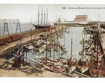 Docks and Mosquito Fleet Galveston Texas Pre-1918 Postcard Unposted