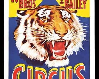 Circus Tiger Vintage Advertising Poster Art - Vintage Print Art - Home Decor - Ringling Barnum Bailey