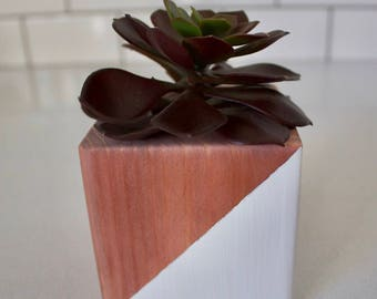 Colorblock Succulent Planter