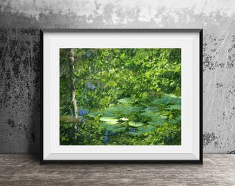 Water Reflection, Lily Pad Art, Nature Photography, Suitable for Framing, Wall Art, Home Decor, Zen Decor, Summer Scene, Abstract Art, Green