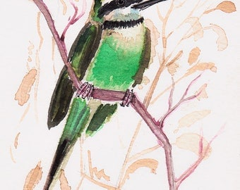 Miniature Watercolour Rapetou Bird on branch