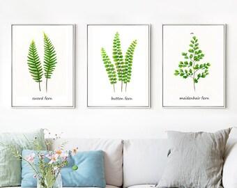Set of 3 Fern print of watercolour paintings, Leaf paintings, botanical paintings, green home decor art prints, spring art