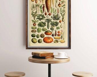 Vintage Vegetables Print, Antique French Vegetable Poster, Vegetables Print, Antique Vegetables Print, Vegetables Wall Art, Vegetable Print