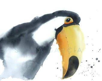 Toucan lithograph