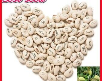 100PCS Magic Growing Message Beans Seeds Magic Bean English Magic Bean Bonsai Green Office Home Decoration Magic Beans 08004