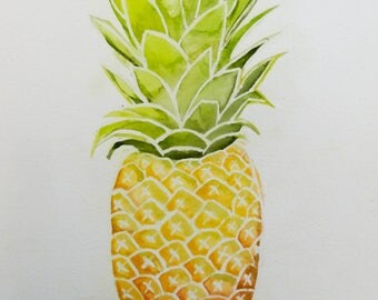 Tropical fruit - pretty pineapple stylistic