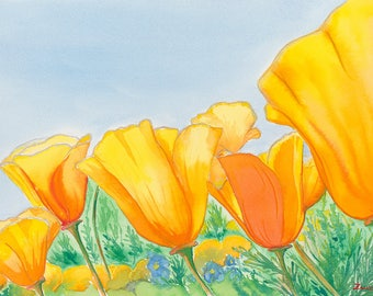 California Poppies Archival Giclée Print on Archival Fine Art Paper Made of Cotton