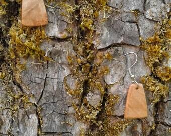 Maple Burl Wood Earrings