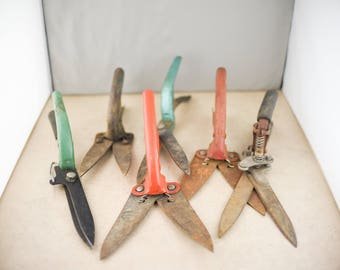Lot of Vintage Garden Shears