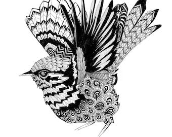 Blue Wren Pattern