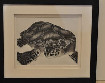 Hand Drawn Charcoal Turtle
