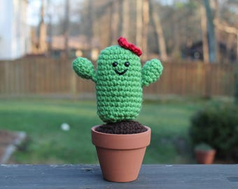 Cute Crochet Desert Cactus