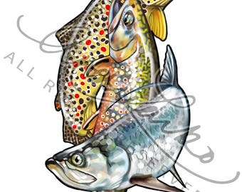 "Brown Trout Brook Trout Tarpon Slam Art Print 8.5""x11"""