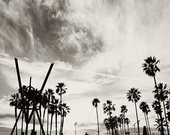 photography, Venice Beach photo, black and white photograph, palm trees, LA, Los Angeles, California beach, boys room decor, gray, for him
