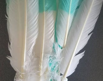 Turquoise/White feathers for craft projects