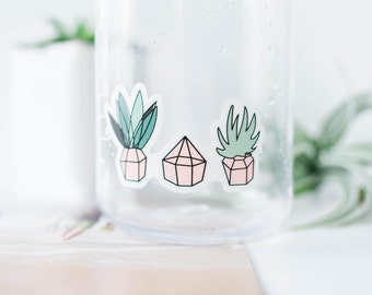 THREE SUCCULENTS STICKER (white) ||  Succulent stickers - Cactus stickers - Gardening stickers - Plant stickers - Succulent Plant stickers