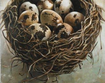 Bird Nest Wall Decor, Large Canvas Nest Print, Birds Nest Art, Fine Art Giclee Print of a Bird's Nest with Eggs, Nature, Wall Decor