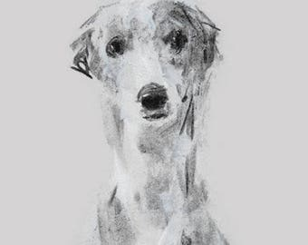 Whippet Grey Charcoal Drawing  - fine art dog print - whippet gift - whippet sketch print