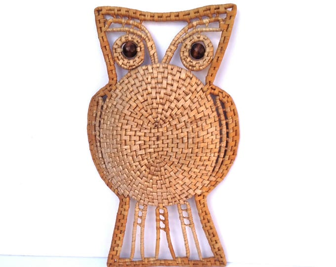 Vintage 1970's Woven Raffia Owl Wall Hanging