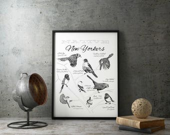 "Native New York Birds Print |  14"" x 18"" 