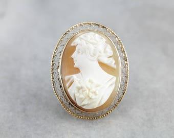 Vintage Cameo Gold Filigree Brooch KHM18UNJ-N