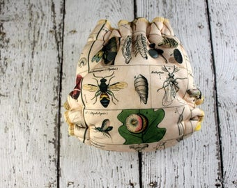 Newborn Bee Hybrid Fitted - Hybrid Fitted Cloth Diaper - Science Cloth Diaper - Newborn Fitted - Newborn Diaper - Newborn Cloth Diaper, Bugs