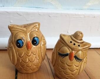 Vintage 1970s Ceramic Owls Salt & Pepper Shakers!