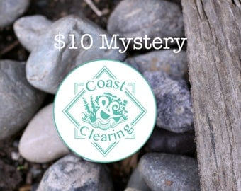 10 Dollar Mystery Item! Perfect for Small Gifts, White Elephants, Mystery Presents, Bridal, Treat Yourself, SOS Box, Try Something New, FOMO