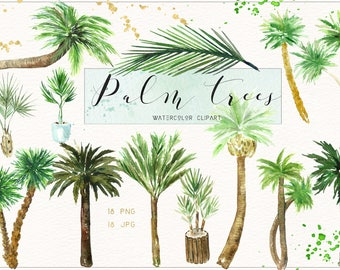 Palm TREES. Watercolor clip art. Digital Watercolours clipart hand drawn.Exotic wedding, tropical invitations, tropical tree