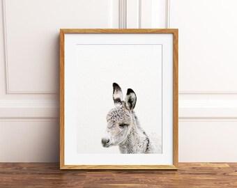 Donkey Print, Baby Donkey Art, Nursery Decor, Animal Art, Baby Animal Prints, Nursery Wall Art, Farm Animal Prints, Kids Room Printable Art
