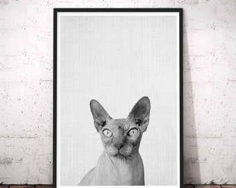 Cat Print, Kitten Art Print, Unique Wall Art, Pet Animal, Cat Wall Art, Cat Portrait, Cat Poster, Black Cat Art Print, Unique Gift Idea