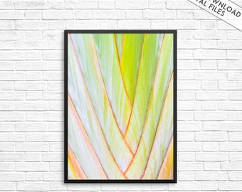 Leaf Print, Tropical Leaves, Palm Leaf, Leaves Wall Art, Tropical Decor, Tropical prints, Botanical Print, Palm Leaf Print,Tropical,Wall Art