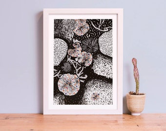 Invertebrate Series Sea Urchins Art Giclee Print