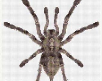 Tarantula Cross Stitch Pattern spider cross stitch Tarantula pattern - 110 x 122 stitches - INSTANT Download - B375