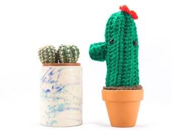 Crochet mini cactus plant, succulent gift, crochet plant, crochet decoration, plants you can't kill, crochet garden