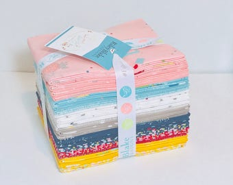 FAt Quarter Bundle Dear Diary by Minki Kim for Riley blake Designs- 21 Fat Quarters