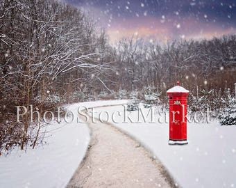 Winter Backdrop, Digital Backdrop, Red Mailbox, Country Road, Photography Backdrop, Composite Background, Holiday Backdrop, Christmas, Snow