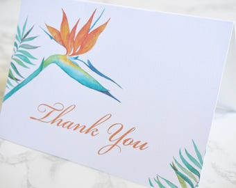 Birds of Paradise Thank You Cards