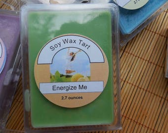 The Great Outdoors Wax Melts / Set of 3