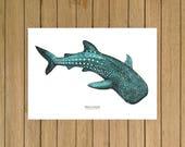 "Whale Shark, Shark, Giclée Print, Watercolor Illustration, Home Decor, Kids Room, Nursery Decor, A5, 8.5""x11"", A4, A3, 13""x19"""